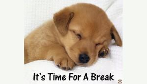 breaktimepup690x400